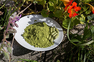 Natürliche Vitalstoffe von sanuvit
