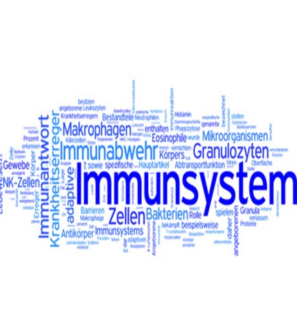 Vitalstoffkur: Immunsystem
